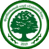 Сколков Бор-logo